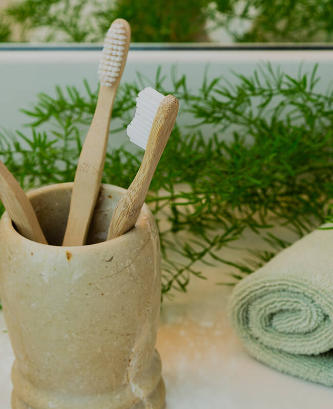 Bamboo Toothbrush Supplier
